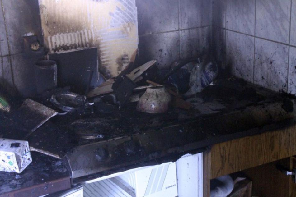 Hund macht Herd an, kurz darauf brennt die Küche!