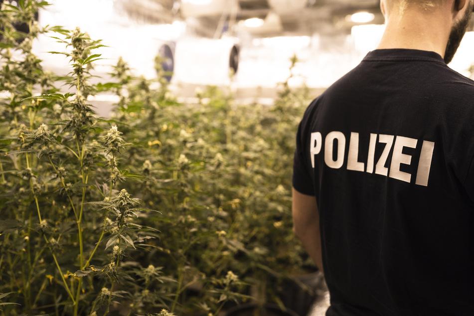 Göttinger Polizei gelingt Schlag gegen die Drogenkriminalität!