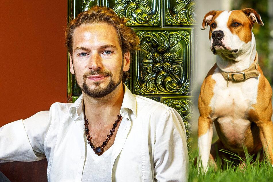 """Ex-""""Polarkreis 18""""-Frontmann Felix Räuber sucht gefährlichen Hund!"""