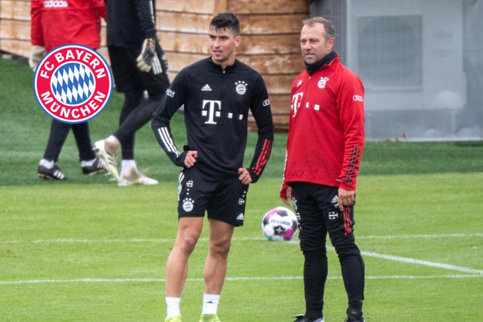 FC Bayern im DFB-Pokal gegen Düren: Liefern die Debütanten ab?