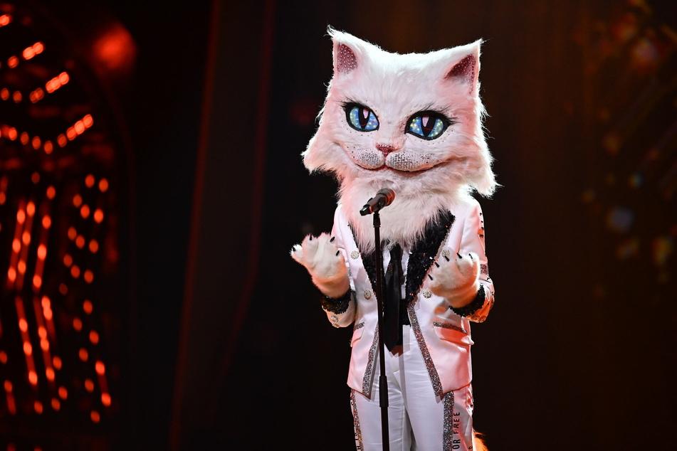 """Halbfinale bei """"The Masked Singer"""": Diese Schlager-Legende war die Katze"""