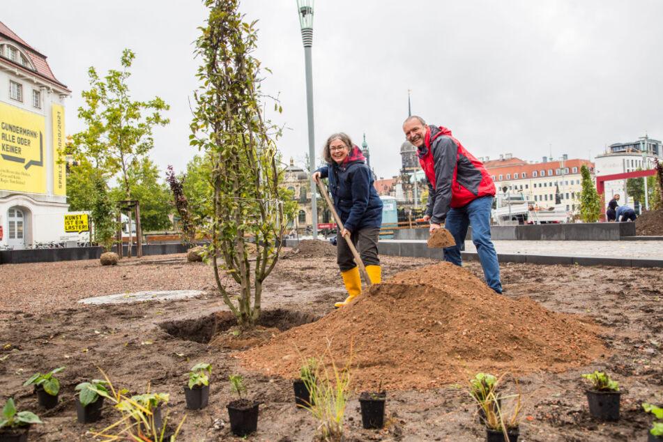 Umweltbürgermeisterin Eva Jähnigen (54, Grüne) und Stadtgrün-Chef Detlef Thiel (58) bepflanzen die neuen Postplatz-Beete.
