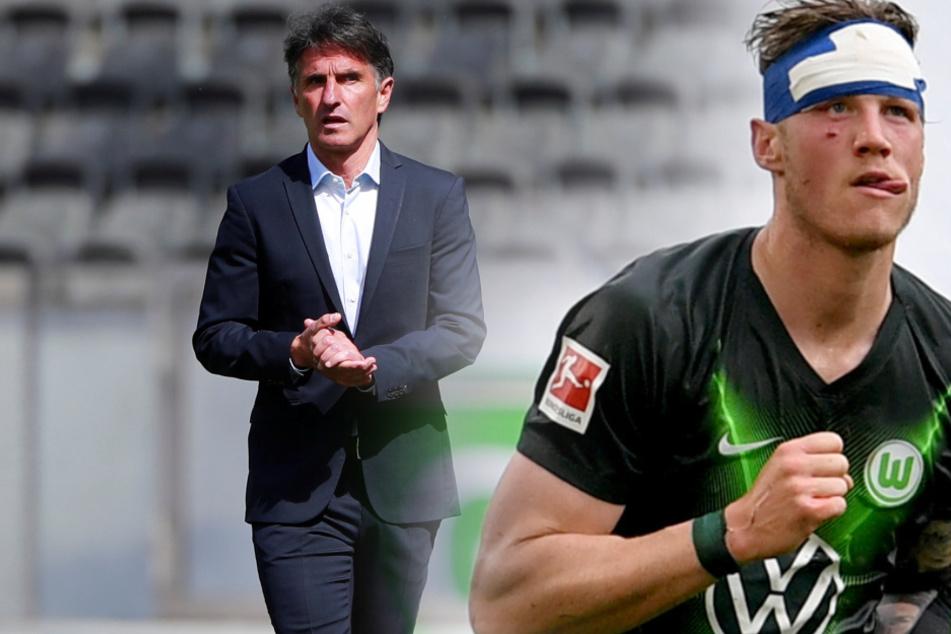 Bruno Labbadia und Wout Weghorst kennen sich noch vom VfL Wolfsburg (Bildmontage).