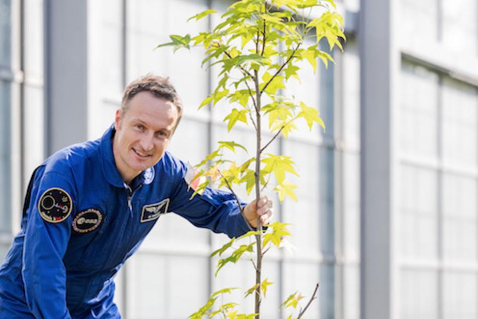 Maurer pflanzte in Erinnerung an die russische Tradition der Kosmonauten einen Baum.