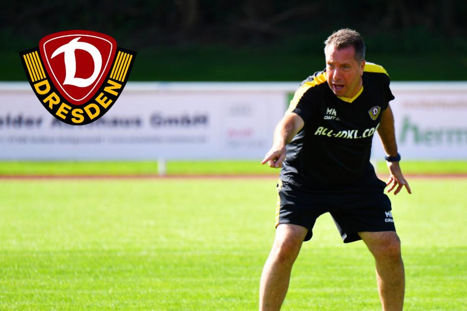 """Dynamo-Coach Kauczinski und sein neues System: """"Das ist alles noch ein bisschen wild"""""""