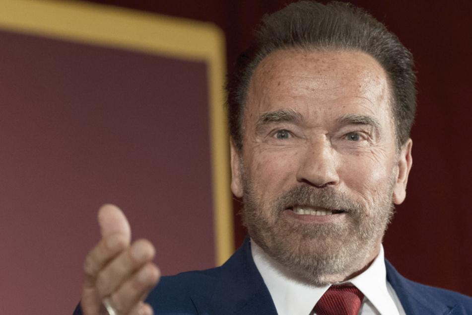 Ex-Gouverneur Schwarzenegger wird Corona-Berater in Kalifornien