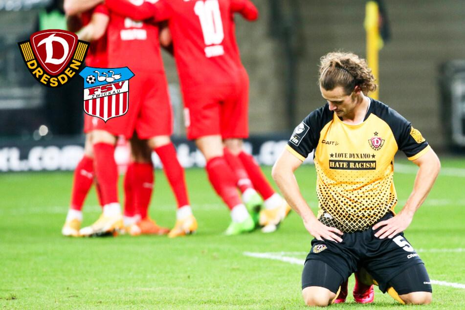 Dynamo kassiert im Ost-Kracher gegen FSV Zwickau nach Führung bittere Heimpleite!