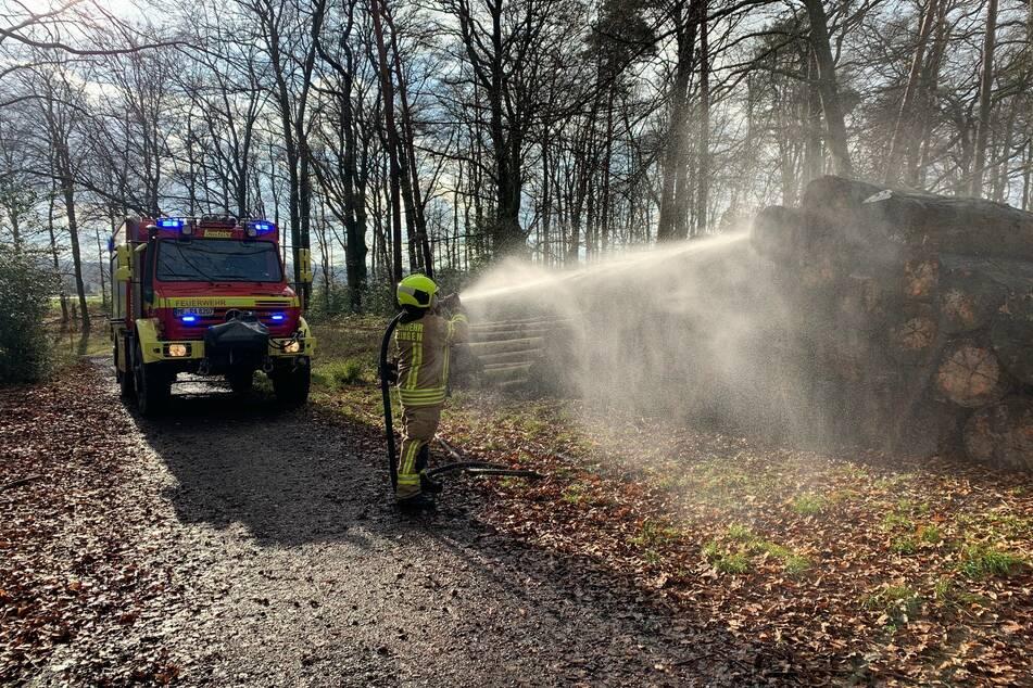 Mysteriös: Feuerwehr wird zu Waldbrand alarmiert, doch was war die Ursache?