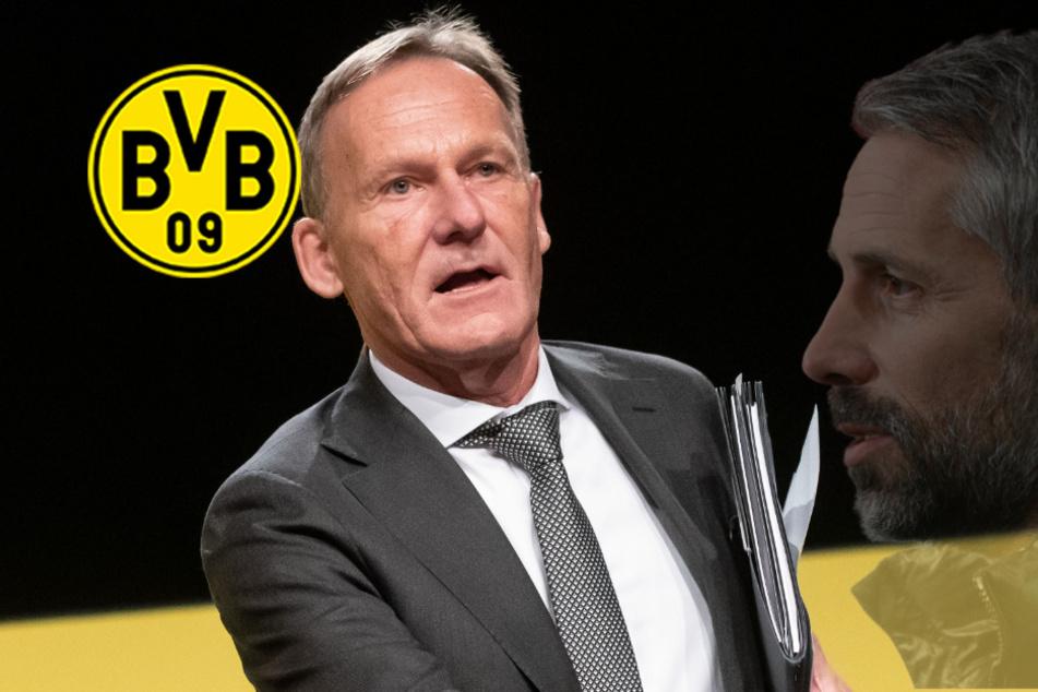 BVB-Trainerkandidaten Rose und Co.: Watzke äußert sich!