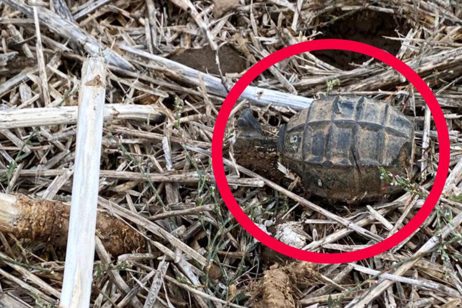 Das Foto zeigt die scharfe Handgranate, die am Sonntag in einem Feld bei Bischofsheim gefunden wurde.
