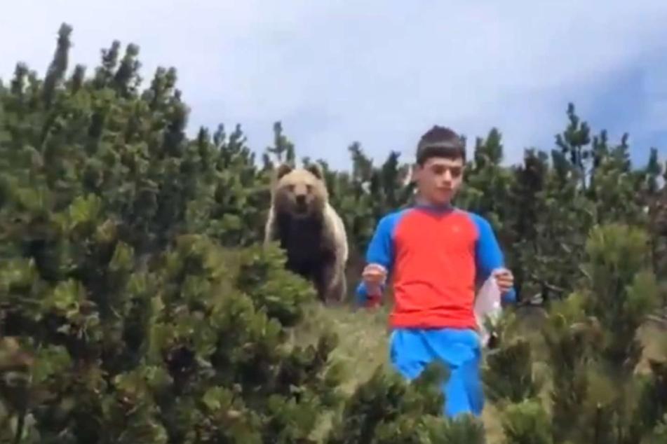 Video zeigt, wie 12-Jähriger in der Wildnis auf Bären trifft