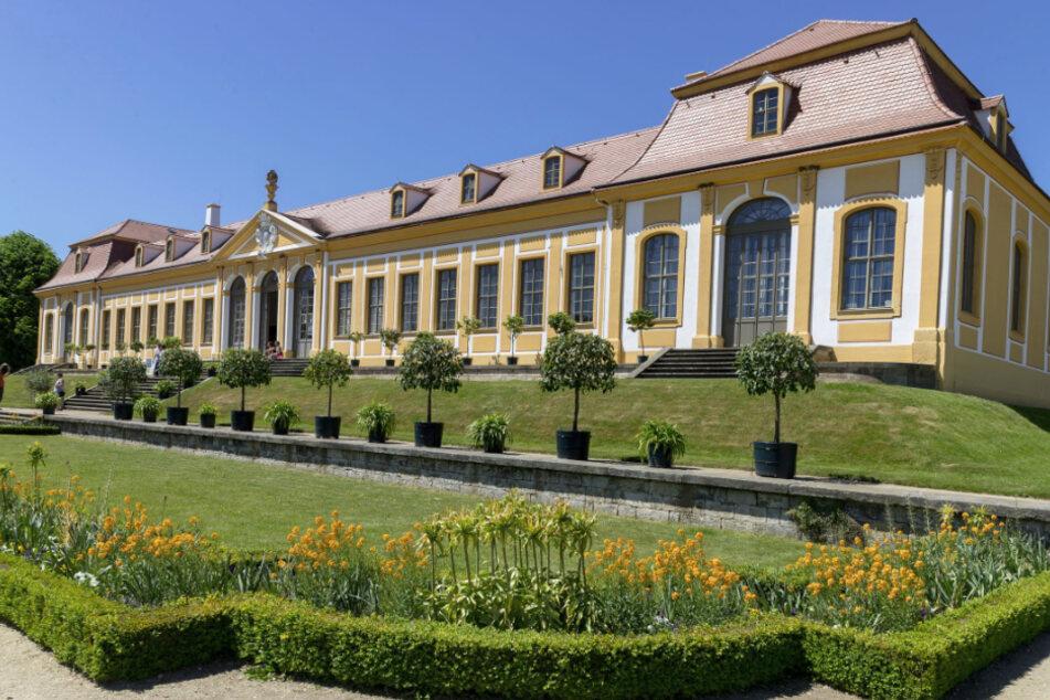 Der Barockgarten Großsedlitz lädt zum Gärtnern ein.