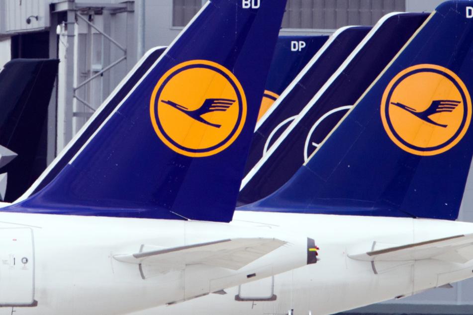 Flugzeuge der Fluggesellschaft Lufthansa stehen am Rand eines Rollfeldes nebeneinander.