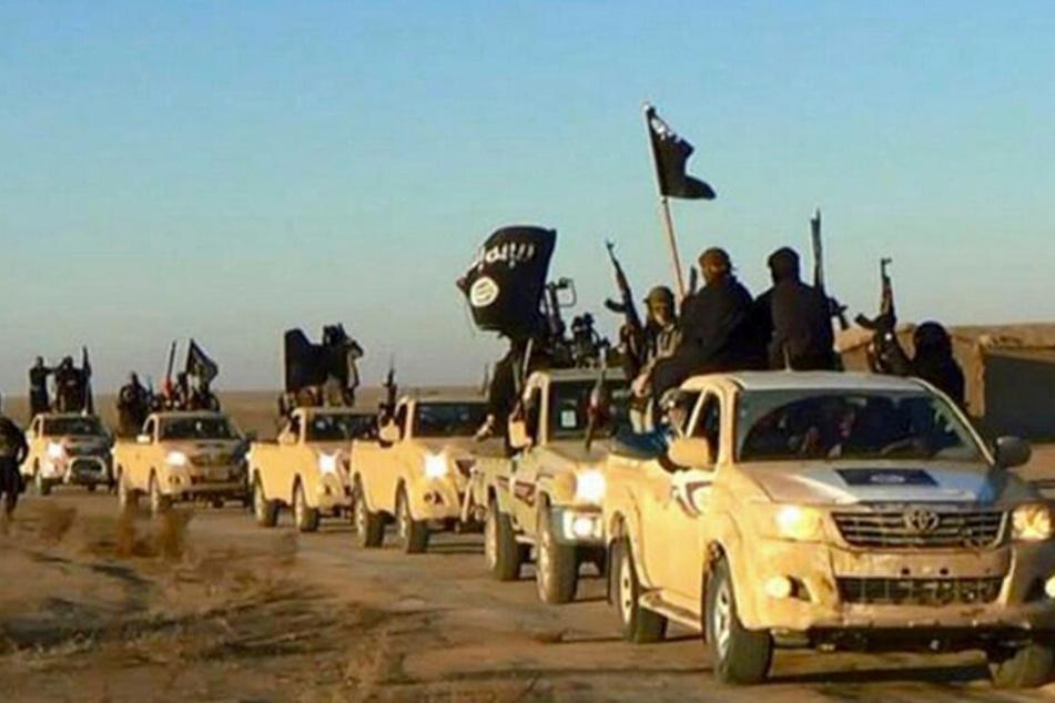 Ein Fahrzeug-Konvoi der Terrormiliz IS in Syrien.