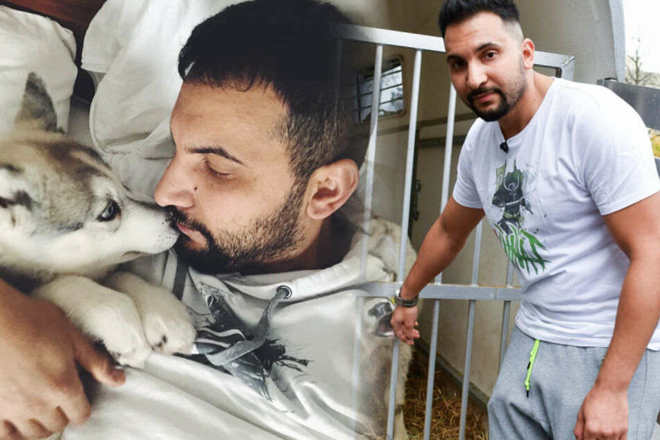 """Macht euch doch nicht lächerlich"": Attila Hildmann schießt gegen Tierschützer"