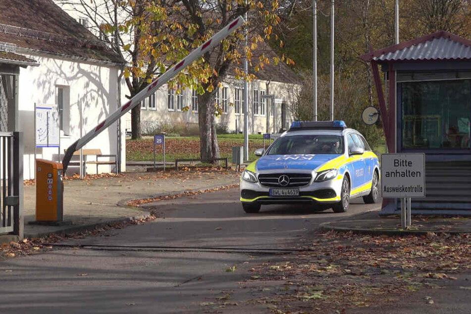 Stuttgart: Mäuse infizieren drei Polizisten mit Hantaviren