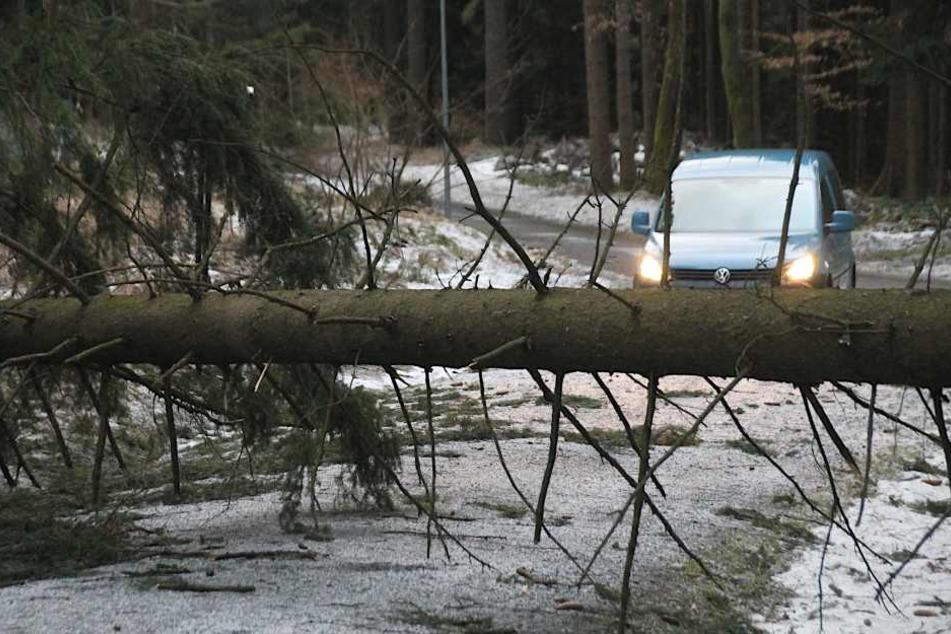 Auch die Auffahrt zum Kuhberg bei Stützengrün wurde durch umgefallene Bäume blockiert.