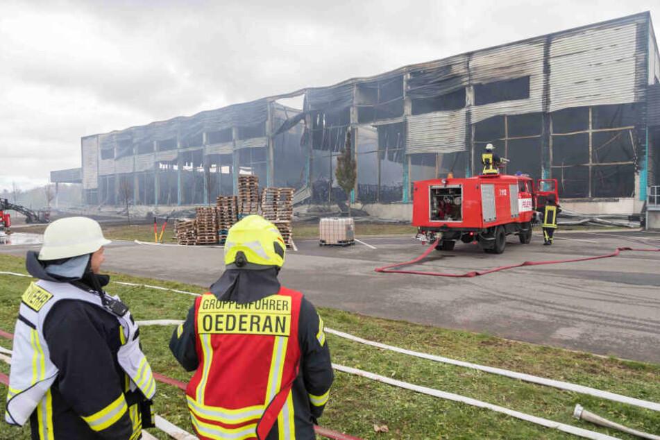 Von der Lagerhalle war am Tag nach dem Großbrand nur noch ein Stahlgerippe mit ein paar verbogenen Blechverkleidungen übrig.