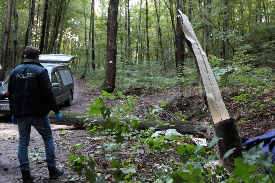 Die Polizei ist an der Unfallstelle im Freitaler Wald vor Ort.
