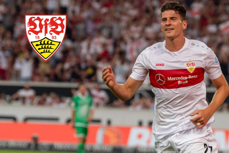 VfB Stuttgart verpasst Sieg beim 3-Ligen-Cup