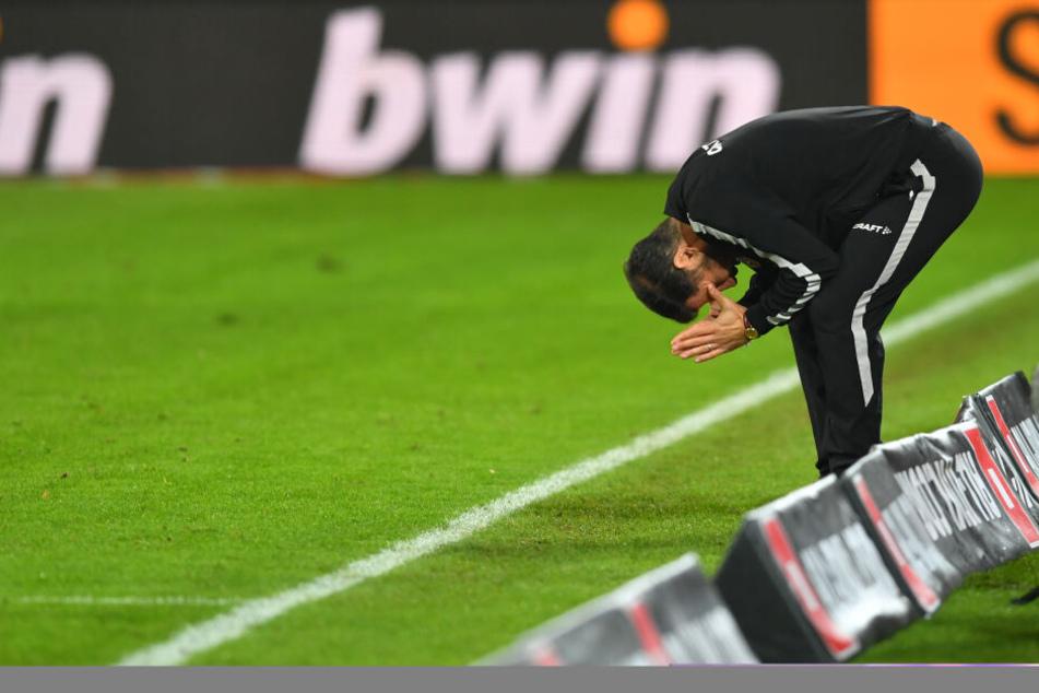 Jaaa!!! Dynamo-Coach Cristian Fiel war beim Schlusspfiff unheimlich erleichtert.