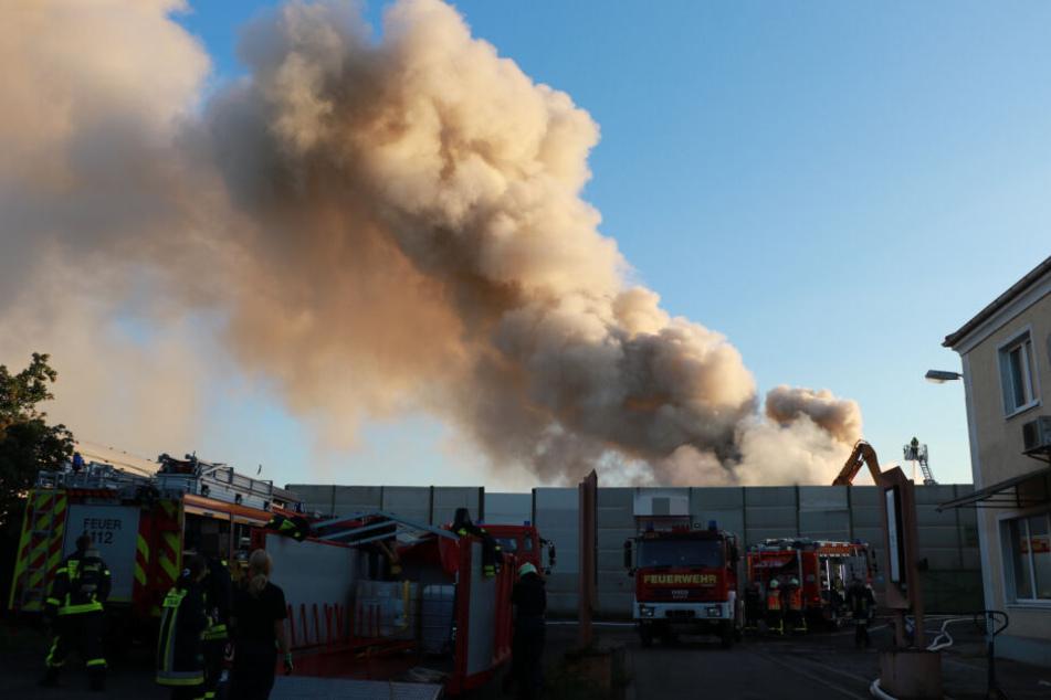 Mehr als 100 Feuerwehrleute waren im Einsatz.