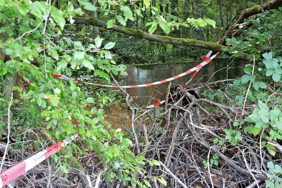Die Leiche lag seit Jahren in dem Waldstück.