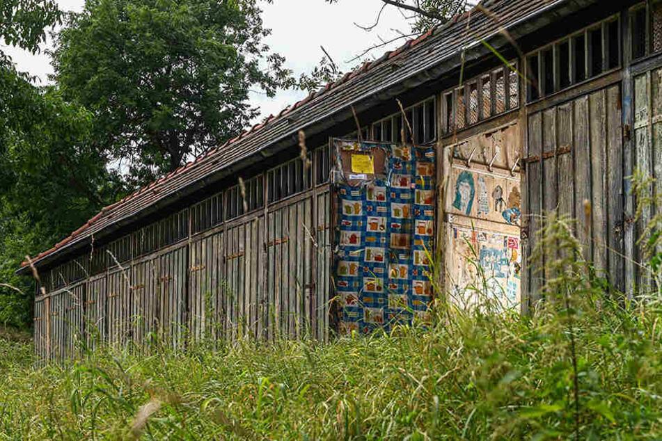 Viele der alten Umkleiden sind bereits restauriert, eine Reihe liegt noch im Dornröschenschlaf.