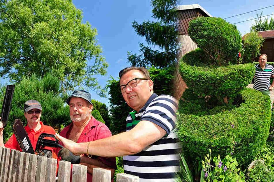 Die Mitglieder des Vereins wehren sich hartnäckig! Gunnar Löser (rechts) liebt seine kunstvoll geschnittene Konifere.
