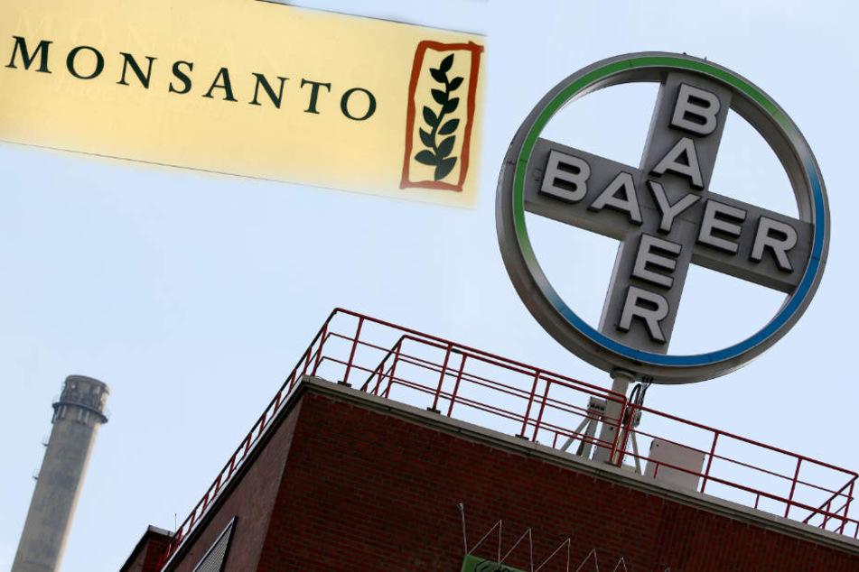Wenn Bayer Monsanto übernimmt, wäre der Leverkusener Konzern an der Weltspitze.