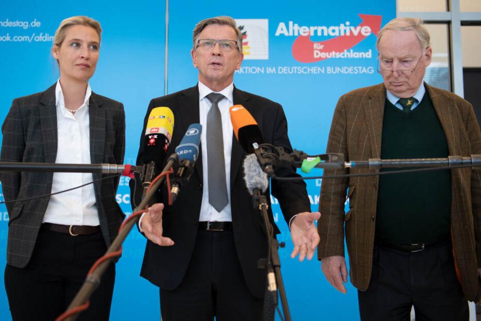 Alice Weidel (alle AfD, l-r), Fraktionsvorsitzende, Gerold Otten, stellvertretender Landeschef, und Alexander Gauland, Fraktionsvorsitzender bei einer Pressekonferenz.