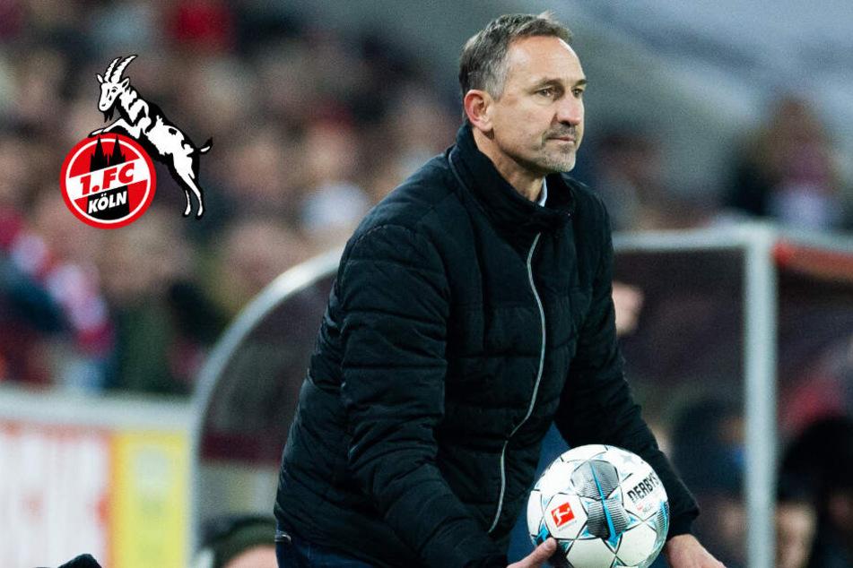Blitz-Comeback als Coach? Geht Achim Beierlorzer bald nach Mainz?