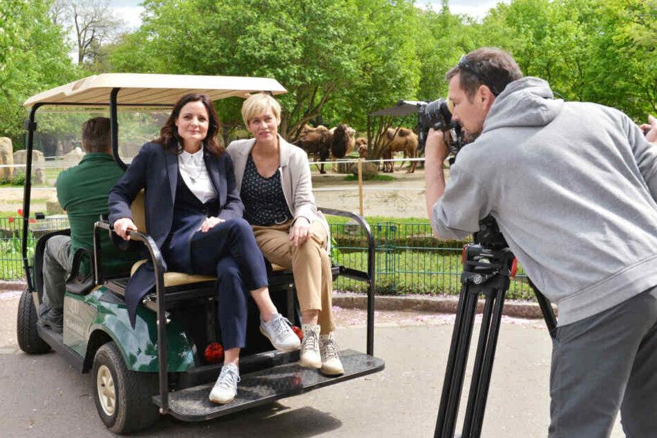 """Mit Statisten im Hintergrund: Gesine Cukrowski (50) und Elisabeth Lanz (47) beim Dreh einer Folge von """"Tierärztin Dr. Mertens""""."""