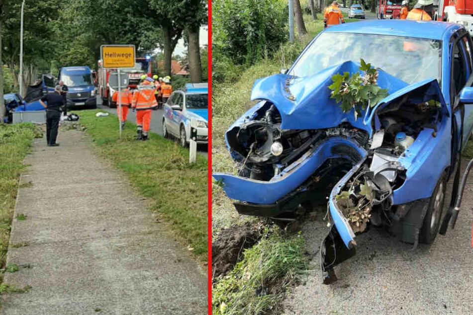 Tödlicher Unfall! Auto kracht frontal in Baum: Fahrer stirbt