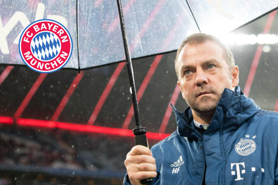 Champions-League-Auslosung: FC Bayern trifft auf Chelsea!