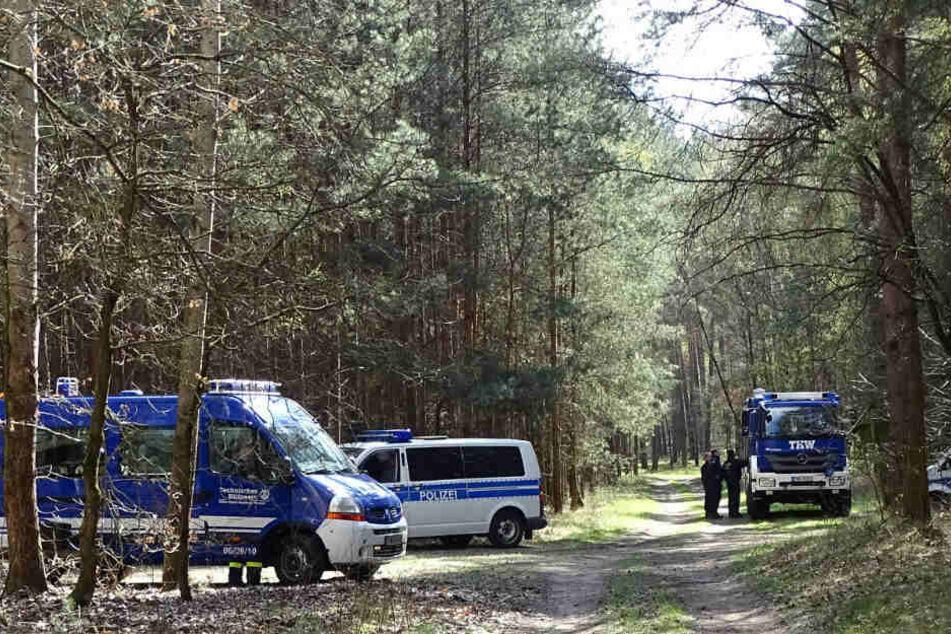 Einsatzfahrzeuge des THW und der Polizei stehen in einem Waldgebiet am Herzberger See.