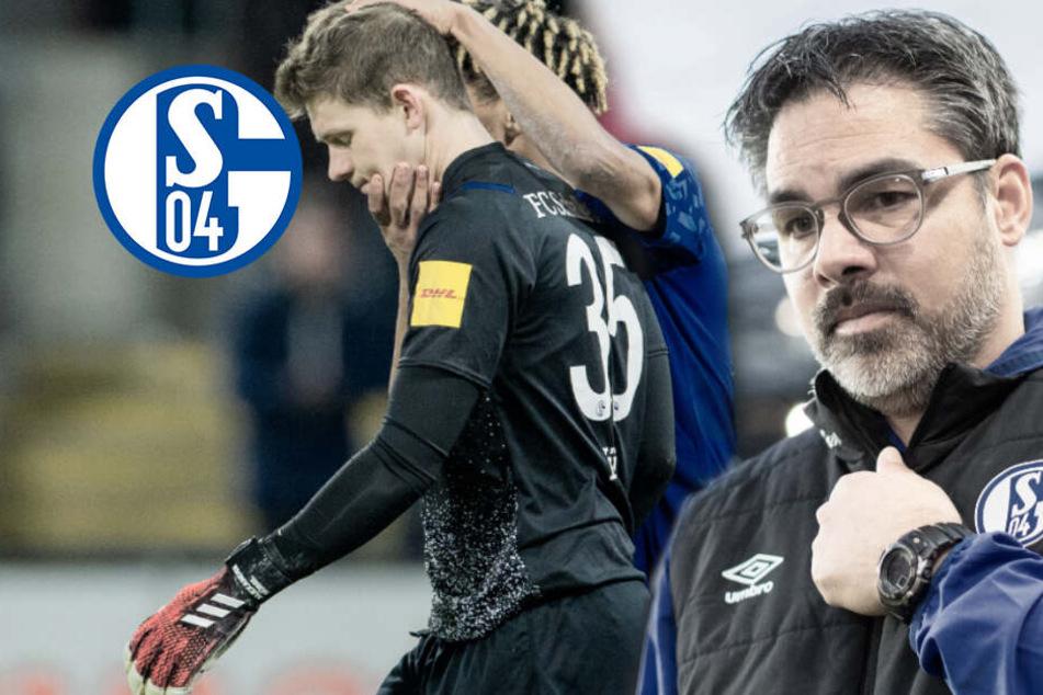 Die Schalke-Krise: Wagner zwischen Torflaute und Nübel-Problem