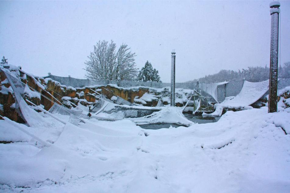 Nichts erinnert mehr an den bunten Vogelpark. 30 cm Neuschnee haben alles unter sich begraben.