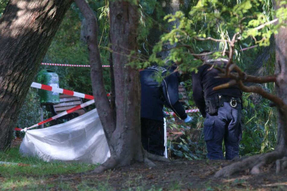 Babyleiche in Berlin entdeckt: Mordkommission ermittelt