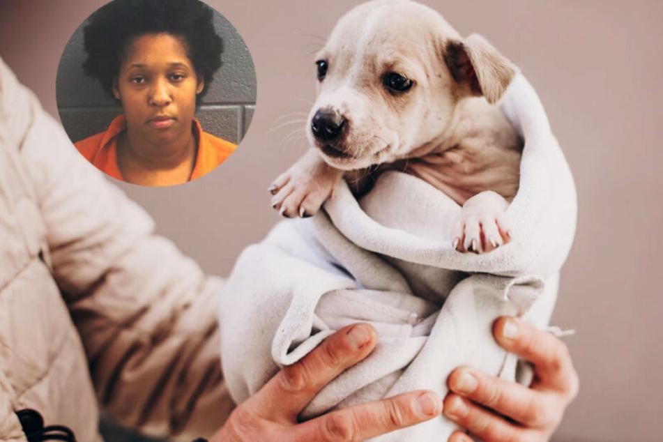 Hund an Baum aufgehängt: Die furchtbare Rache einer Frau an ihrem Ex