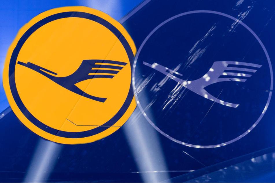 Das neue Lufthansa-Logo: Der Kranich bleibt, doch sein gelbes Gewand legt er ab.