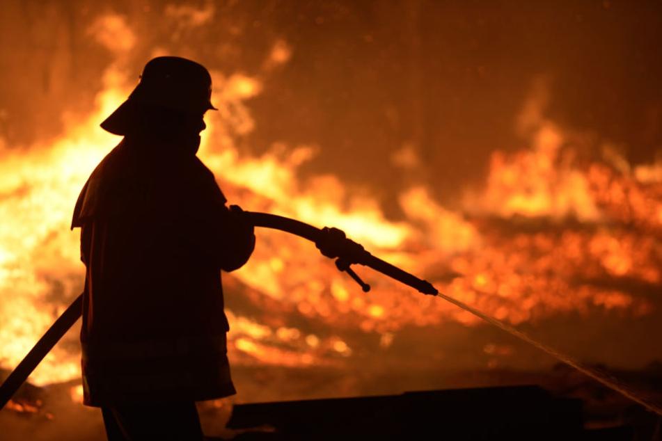 Im Inneren der Lagerhalle loderten die Flammen. (Symbolbild)