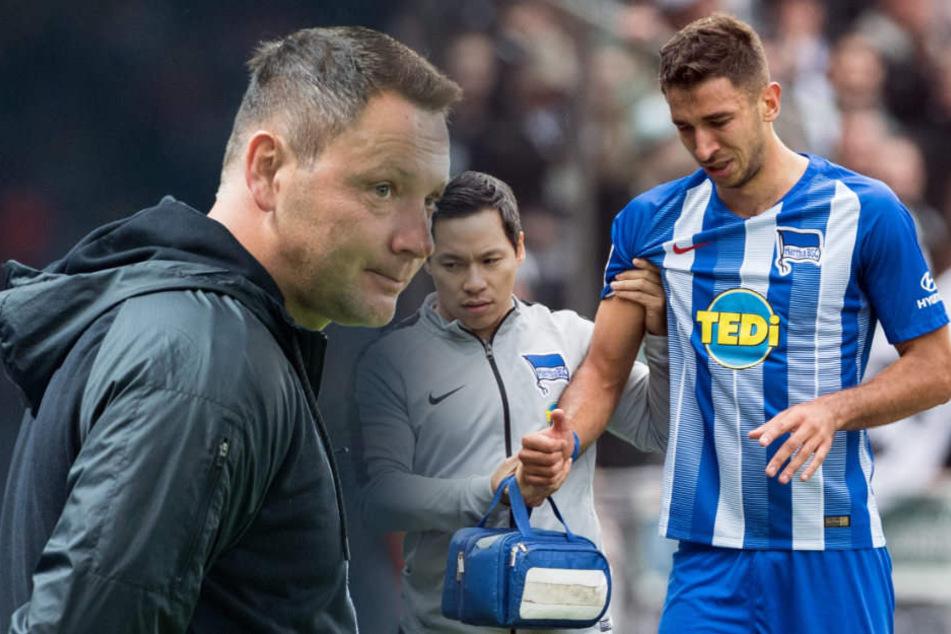 Pal Dardai weiß noch nicht, ob er Marko Grujic jetzt schon von Anfang an bringen sollte. (Bildmontage)