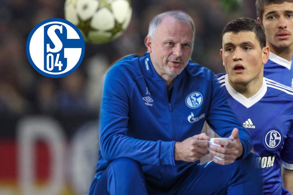 Papadopoulos zurück zu Schalke? Jetzt äußert sich Sport-Vorstand Schneider!