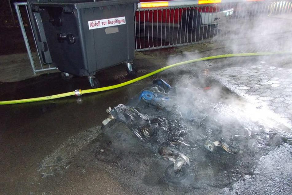 Durch das Feuer wurden unter anderem drei Papiercontainer komplett zerstört.