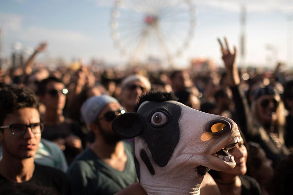 Bei einem Festival treffen Männer, Frauen und skurrile Gestalten aufeinander.
