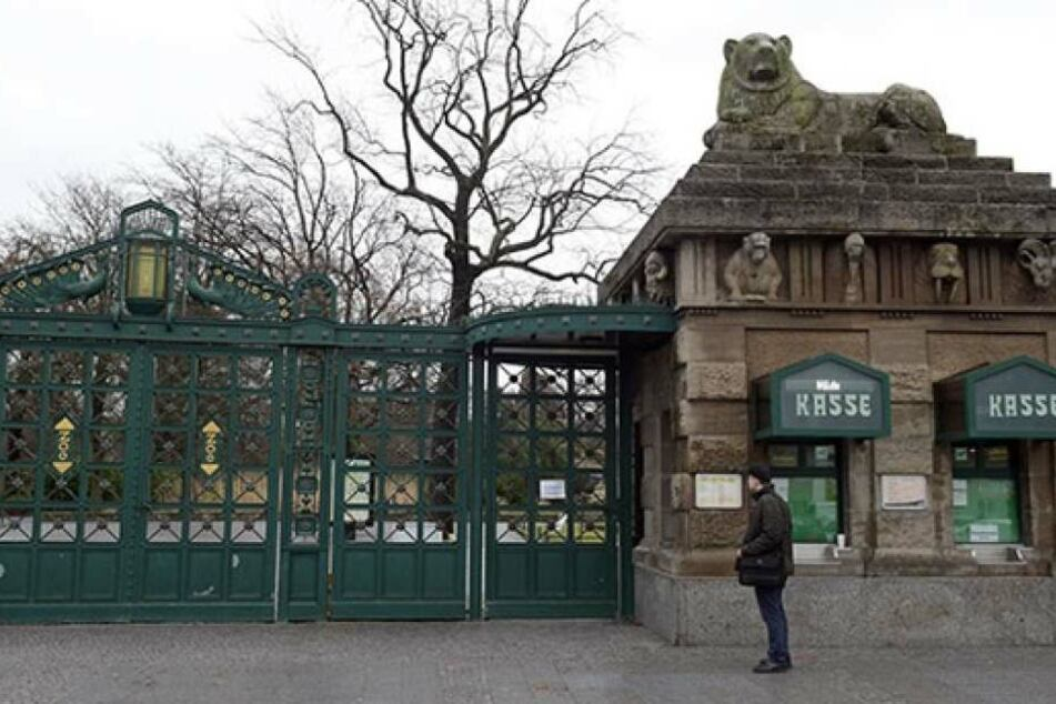 Auf den Namen Fritz hat sich eine siebenköpfige Jury von Berliner Zoo geeinigt.