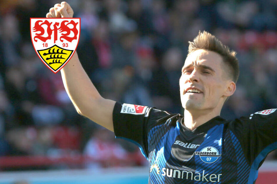 Neuzugang: VfB kauft Paderborns Klement!
