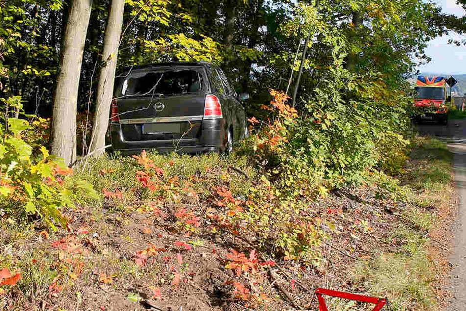 Der Opel ist von der Fahrbahn abgekommen und in den Wald gefahren.
