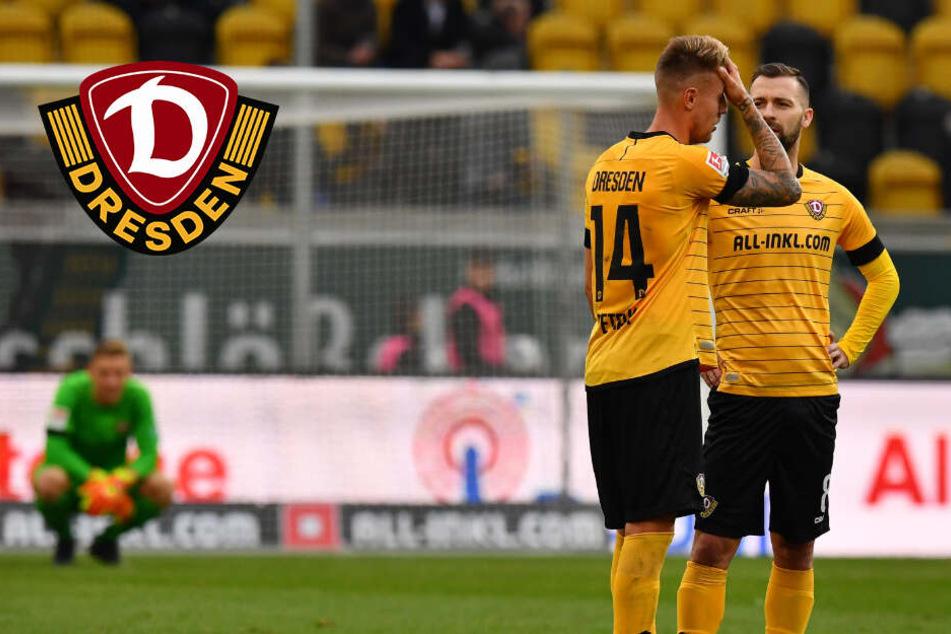 "Dynamos Neuzugänge passen sich dem ""Niveau"" an"